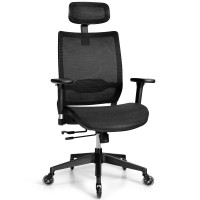 Adjustable Mesh Computer Chair with Sliding Seat and Lumbar Support