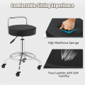 Pneumatic Work Stool Rolling Swivel Task Chair Spa Office Salon with Cushioned Seat