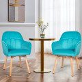 Set of 2 Mid-Back Accent Leisure Armchairs