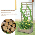 Raised Garden Bed with Trellis for Climbing Plants