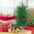 "36"" Mini Carmel Pine Christmas Tree with 30 Pinecones"