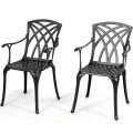 2 Pcs Durable Aluminum Dining Chairs  Set with Armrest