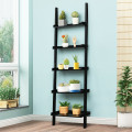 5-Tier Wall-leaning Ladder Shelf  Display Rack for Plants and Books