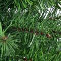 2 Feet/3 Feet Holiday Season Decor Artificial PVC Christmas Tree